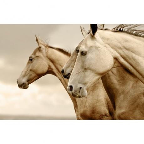 Mint_Sepia_Horses_vasakule_dekupaazipaber_1.jpg