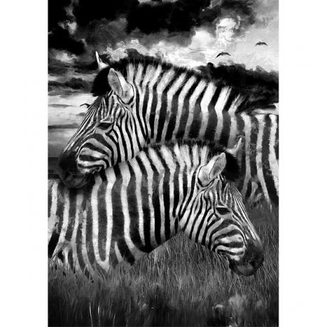 Mint_Zebra_dekupaazipaber.jpg