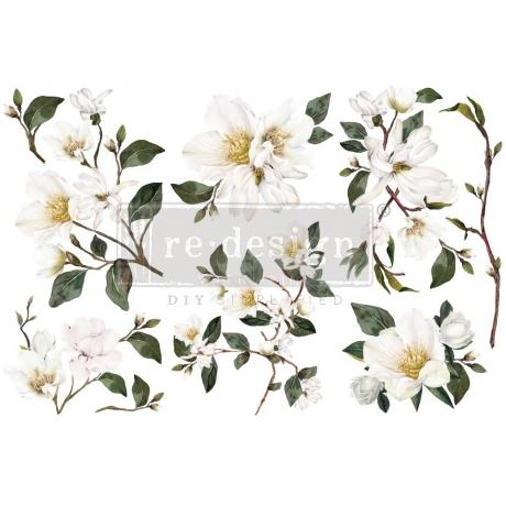 transfer-white-magnolia.jpg