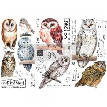 Redesign with Prima siirdepilt Owl