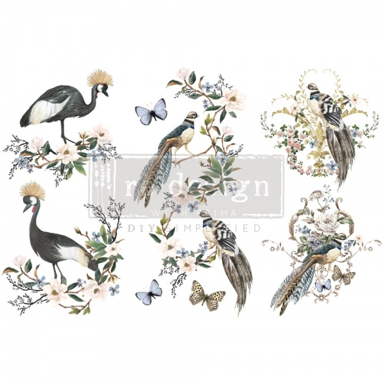 Redesign with Prima Rare birds