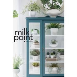 Terrarium_Fusion_Milk_Paint_Powder_China_Cabinet__WR_200904_1359(1).jpeg