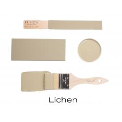 Fusion Lichen